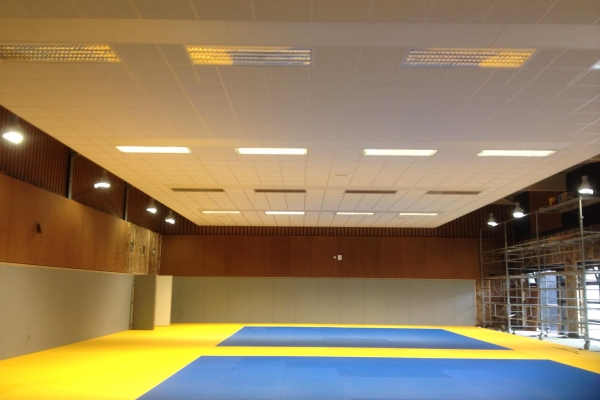 plafonds-laine-de-roche-ekla-salle-de-sport-la-gyonniere-holding-pichaud-vinetDDCDAD03-E92A-E5ED-6C3F-C8C9C54906AB.jpg