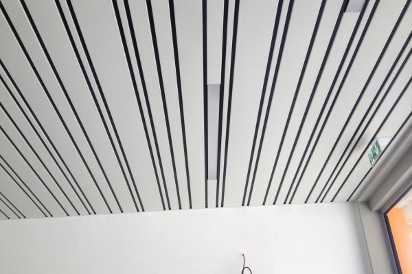 plafonds-aluminium-st-paul-mont-penit-luxalon-multi-lames-holding-pichaud-vinetE2C032C7-C3A6-E120-13BA-4A411876A912.jpg